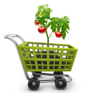 e-commerce-advanced-plan