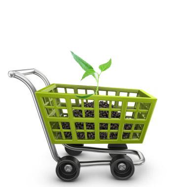 e-commerce-initial-plan