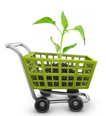e-commerce-premium-plan