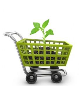 e-commerce Le commerce en ligne