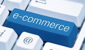 Profil du e-commerçant 2012