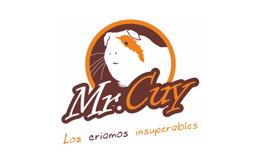 Design et conception logo MisterCuy