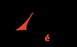 logo_VilleMontreal